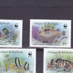 Fauna WWF ,pesti exotici ,Antigua &Barbuda.