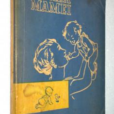 Scoala Mamei - 1980 - Carte Ghidul mamei