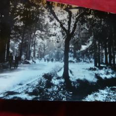 Ilustrata Baile Moneasa judet Arad -Vedere din parc, circulat 1960 - Carte Postala Transilvania dupa 1918, Circulata, Fotografie
