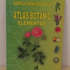 ATLAS BOTANIC ELEMENTAR-Kodzabasija, Gabriela-Corina