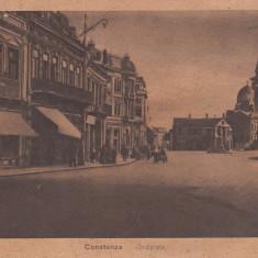 CONSTANTA, PIATA OVIDIU - Carte Postala Dobrogea dupa 1918, Necirculata, Printata