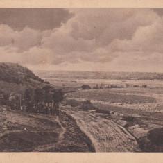 PANCIU, FELDPOSTKARTE - Carte Postala Moldova 1904-1918, Stare: Necirculata, Tip: Printata