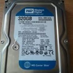 Oferta limitata : Hdd sata 320 gb WD, 100 % testate, garantie 6 luni - Hard Disk Western Digital, 200-499 GB, Rotatii: 7200, SATA2, 16 MB