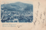 SALUTARI DIN RESITA ,  VEDERE GENERALA. , CLASICA , CIRCULATA 1899, Printata