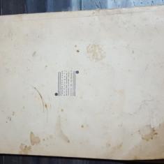 N. N. Tonitza Note despre pictura - Album Pictura