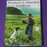 DVD FILM ORIGINAL PESTERA CAINELUI GALBEN - Film Colectie, Romana