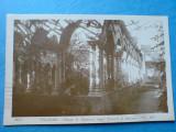 C. P.  pentru Gheorghe Teodorescu Kirileanu, Palatul Regal din Calea Victoriei, Circulata, Fotografie, Italia