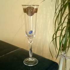 CUPA DE SAMPANIE VERSACE DIN CRISTAL DE BOHEMIA - Pahare