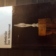 Pasarile lui Brancusi - Athena T. 61 - Carte sculptura