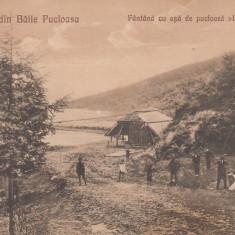 SALUTARI DIN BAILE PUCIOASA FANTANA CU APA DE PUCIOSA ''LA SURSA'' - Carte Postala Muntenia dupa 1918, Necirculata, Printata