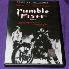 DVD FILM RUMBLE FISH / GOLANII matt dillon, mickey rourke, Romana