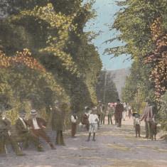 SALUTARI DIN PUCIOASA ALEEA PARCULUI CIRCULATA 1924 - Carte Postala Muntenia dupa 1918, Printata