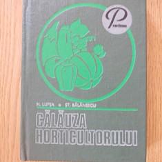 CALAUZA HORTICULTORULUI- LUPSA, BALANESCU- cartonata - Carte Hobby Gradinarit