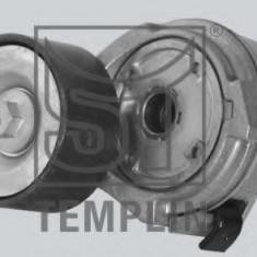 Intinzator curea, curea distributie - TEMPLIN 08.050.1965.030 - Intinzator Curea Distributie