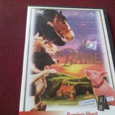 FILM DVD   BABE, Engleza