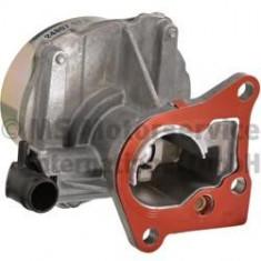 Pompa vacuum, sistem de franare RENAULT MEGANE III hatchback 1.9 dCi - PIERBURG 7.24807.57.0 - Pompa vacuum auto