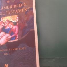 Prof. Alexandru Mihaila, (NE)LAMURIRI DIN VECHIUL TESTAMENT - Carti ortodoxe