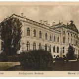 629 - BUCURESTI, Zoological Museum - old postcard - used