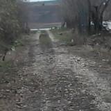 Teren intravilan 1600 m patrati la 45 km de Bucuresti, sat Naipu - Teren de vanzare