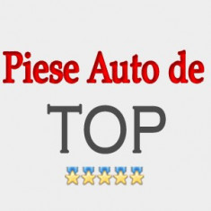 ARC FATA DACIA BERLINA - Arcuri auto