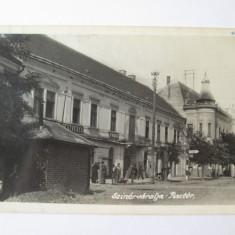 RARA! CARTE POSTALA NECIRCULATA SEINI/MARAMURES ANII 20 - Carte Postala Maramures dupa 1918, Printata