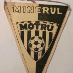 PVM - Fanion fotbal MINERUL MOTRU