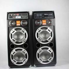 Set 2 boxe active cu USB si slot SD pentru Karaoke Temeisheng DP-2304 - Echipament karaoke