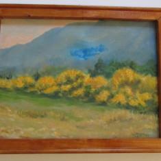 TABLOU-PEISAJ CU POMI GALBENI-acrilic pe panza, rama lemn, semnat - Tablou autor neidentificat, Peisaje, Altul