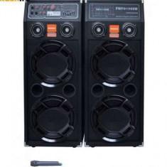 Sistem Karaoke boxe audio Temeisheng DP-2329 - Echipament karaoke