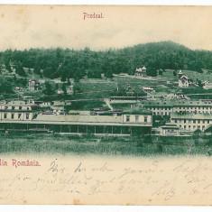1980 - L i t h o, Brasov, PREDEAL, Railway Station - old postcard - used - 1900 - Carte Postala Transilvania pana la 1904, Circulata, Printata