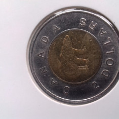 Moneda Canada 2 dolari 2010 in cartonas autoadeziv, America de Nord