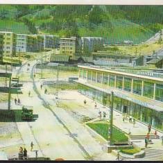 Bnk cp Baia Borsa - Vedere - circulata - Carte Postala Maramures dupa 1918, Printata