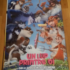 Afis / poster cinema Un lup printre oi original folosit / by WADDER