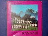 Rasinari - Ion Miclea / C64P