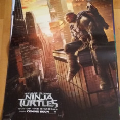 Afis / poster cinema Testoasele ninja 2 original folosit / by WADDER