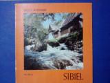 Sibiel - Ion Miclea / C64P