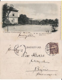 Cluj- tenis, animata-clasica, rara, Circulata, Printata