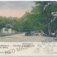 3454 - Alba, SEBES-ALBA, Elisabeth Park - old postcard - used - 1904 - Carte Postala Transilvania pana la 1904, Circulata, Printata