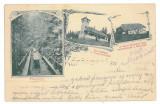 3475 - Litho, Maramures, FRASIN, pe raul Tisa - old postcard - used - 1901, Circulata, Printata