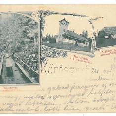 3475 - Litho, Maramures, FRASIN, pe raul Tisa - old postcard - used - 1901 - Carte Postala Maramures pana la 1904, Circulata, Printata