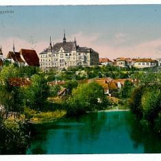 2046 - Mures, SIGHISOARA - old postcard - used - 1917 - Carte Postala Transilvania 1904-1918, Circulata, Printata
