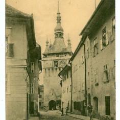 2348 - Mures, SIGHISOARA - old postcard - unused - Carte Postala Transilvania 1904-1918, Necirculata, Printata