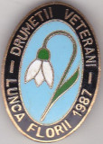 Insigna Lunca Florii 1987 - Drumetii Vetearni