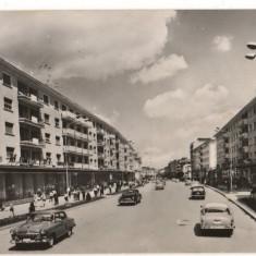 CPI (B7378) CARTE POSTALA - BACAU. CALEA MARASESTI, R.P.R., 1964 - Carte Postala Moldova dupa 1918, Circulata, Fotografie