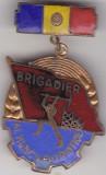Insigna Brigadier al Muncii Patriotice