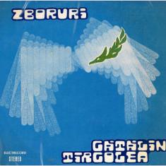 Catalin Tarcolea – Zboruri (LP) - Muzica Rock Altele, VINIL