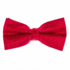Papion rosu barbati geometric - Papion Barbati