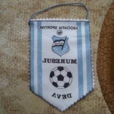 Fanion MURESUL deva - Fanion fotbal