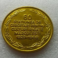CALARASI-MARCULESTI-MEDALIA STATIUNII DE CERCETARI AGRICOLE MARCULESTI 1989 - Medalii Romania