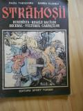 RADU THEODORU--STRAMOSII - BUREBISTA